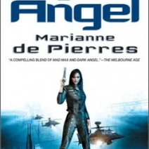 Giveaway Winner: Nylon Angel by Marianne de Pierres
