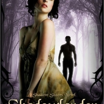 Blog Tour and Giveaway: Theresa Meyers, author of Shadowlander
