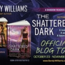 Guest Post (& Giveaway): Sandy Williams, author of The Shattered Dark