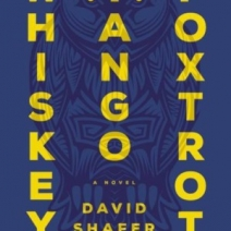 Interview: David Shafer talks about Whiskey Tango Foxtrot, genre-blending, and more