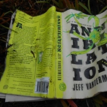 Tidal Pool Rules: A Guest Post by Jeff VanderMeer (The Southern Reach Trilogy)