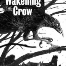 Wakening the Crow by Stephen Gregory