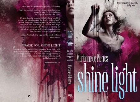 NC_Kubicki_int_shine-light (2)