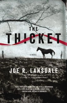 thethicket