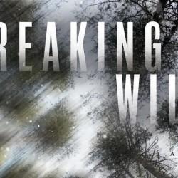 breakingwild
